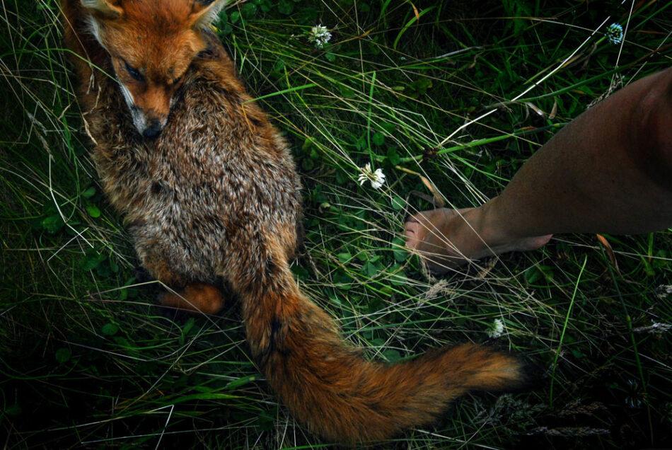 Film Unit Stills Photographer Ireland